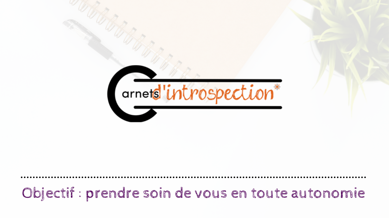 carnets-d-introspections
